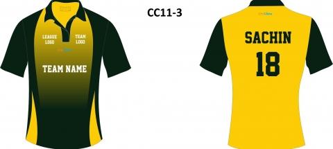 CC11-3